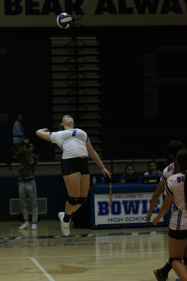 Volleyball Hopes to Live Up to Fan Expectation