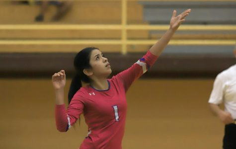 Volleyball Falls to Irvin, 3-0