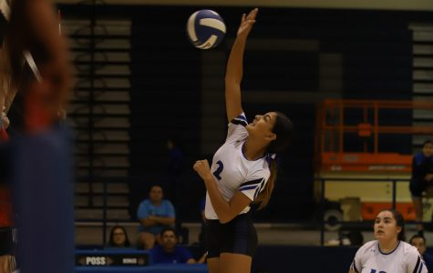 Volleyball Takes Early Lead, Doesn't Look Back in 3-1 Victory Over Austin