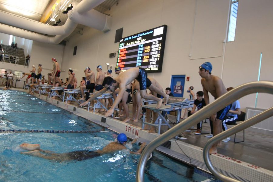 Swim Goes to Districts